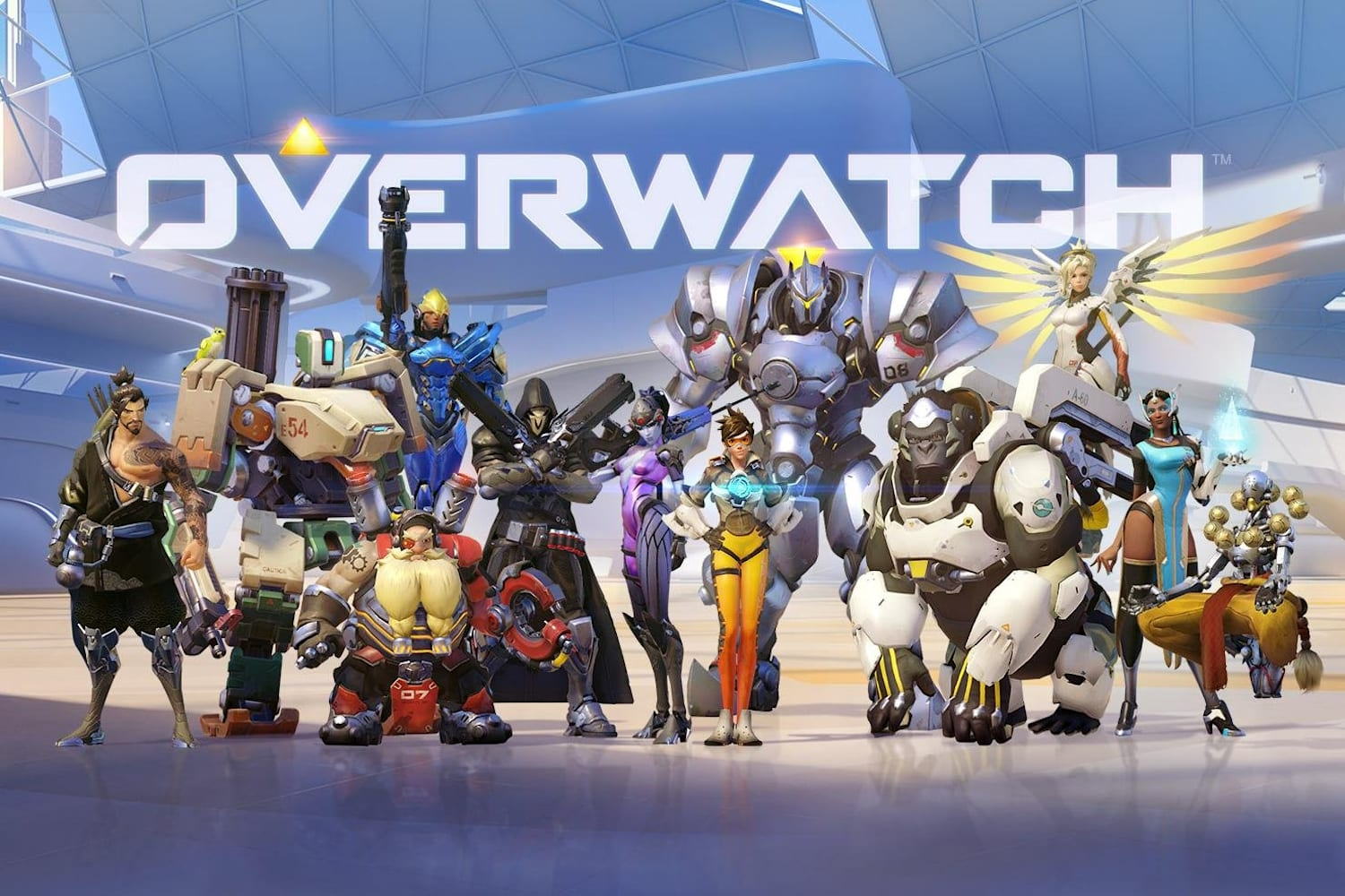 Overwatch the game